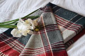 Concours Allée du foulard 3