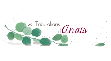 Les tribulations d'Anais
