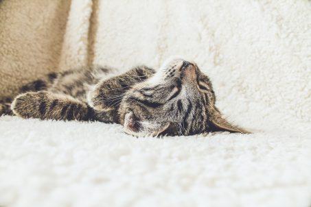 Astuces naturelles pour mieux dormir