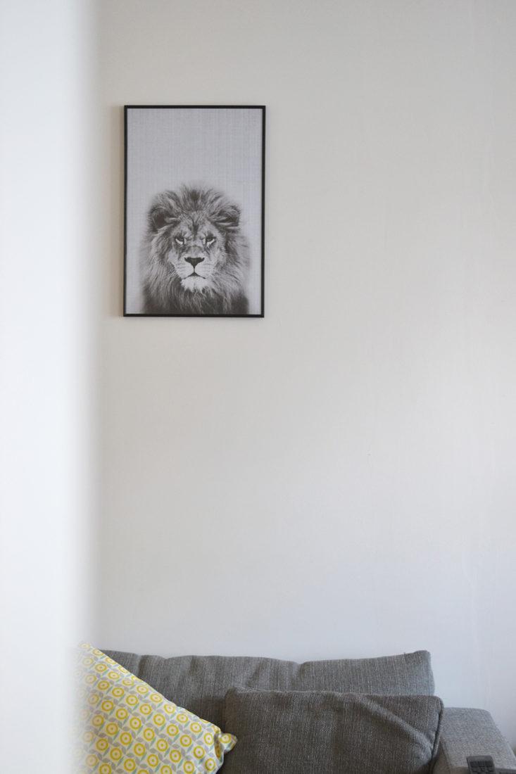 Affiche Juniqe - Lion