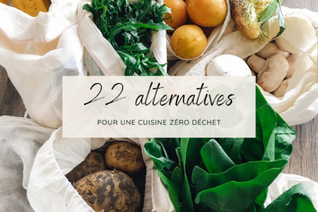 22 Alternatives - Cuisine Ecolo