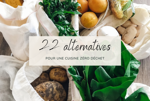 22 Alternatives - Cuisine Ecolo